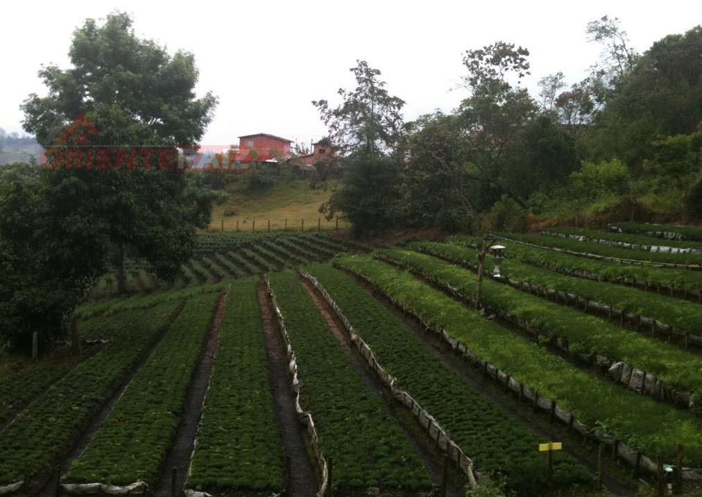 El POT en Rionegro regula los usos del predio, siendo el mínimo parfa la construcción una hectárea por lote