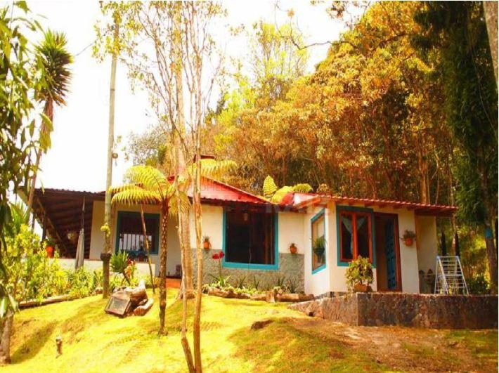 Entre los corregimientos del Oriente Antioqueño Santa Elena destaca por ser un oasis en pleno Altiplano